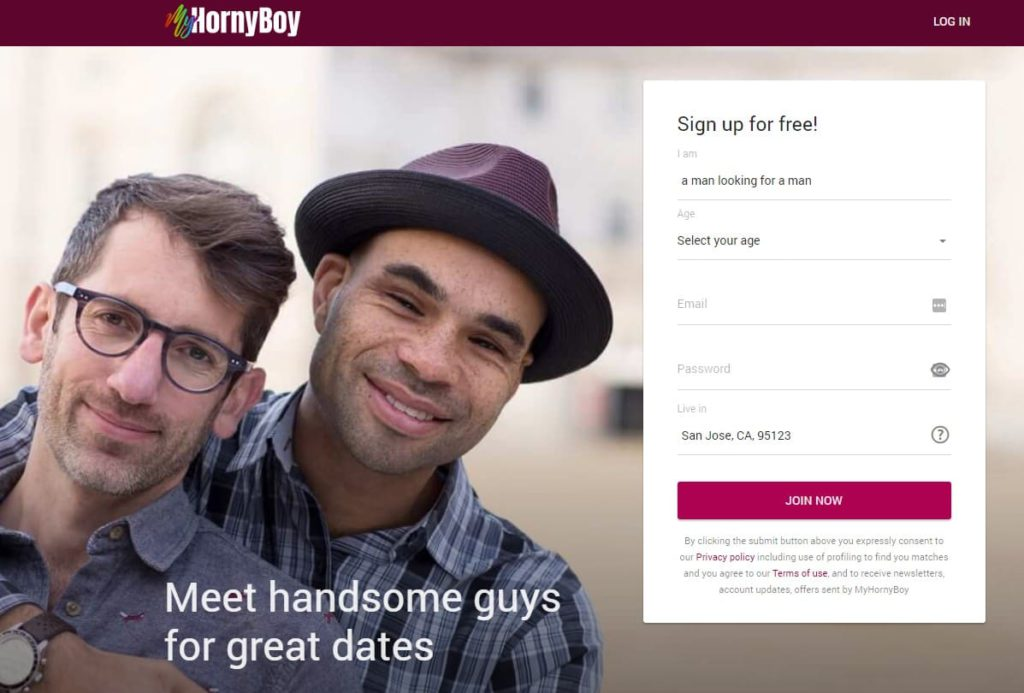 myhornyboy gay hookup
